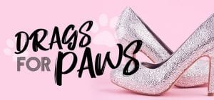 graphic - drags for paws banner ad