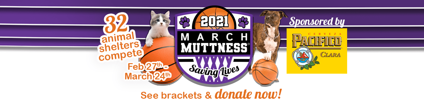 March-Muttness-global-website-banner-2
