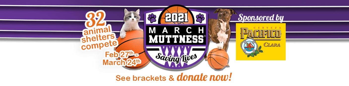 March-Muttness-global-website-banner-2