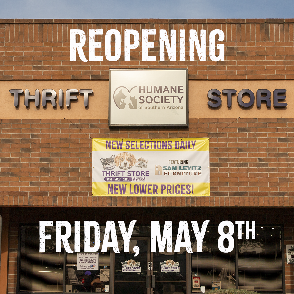 Thrift Reopening Graphic