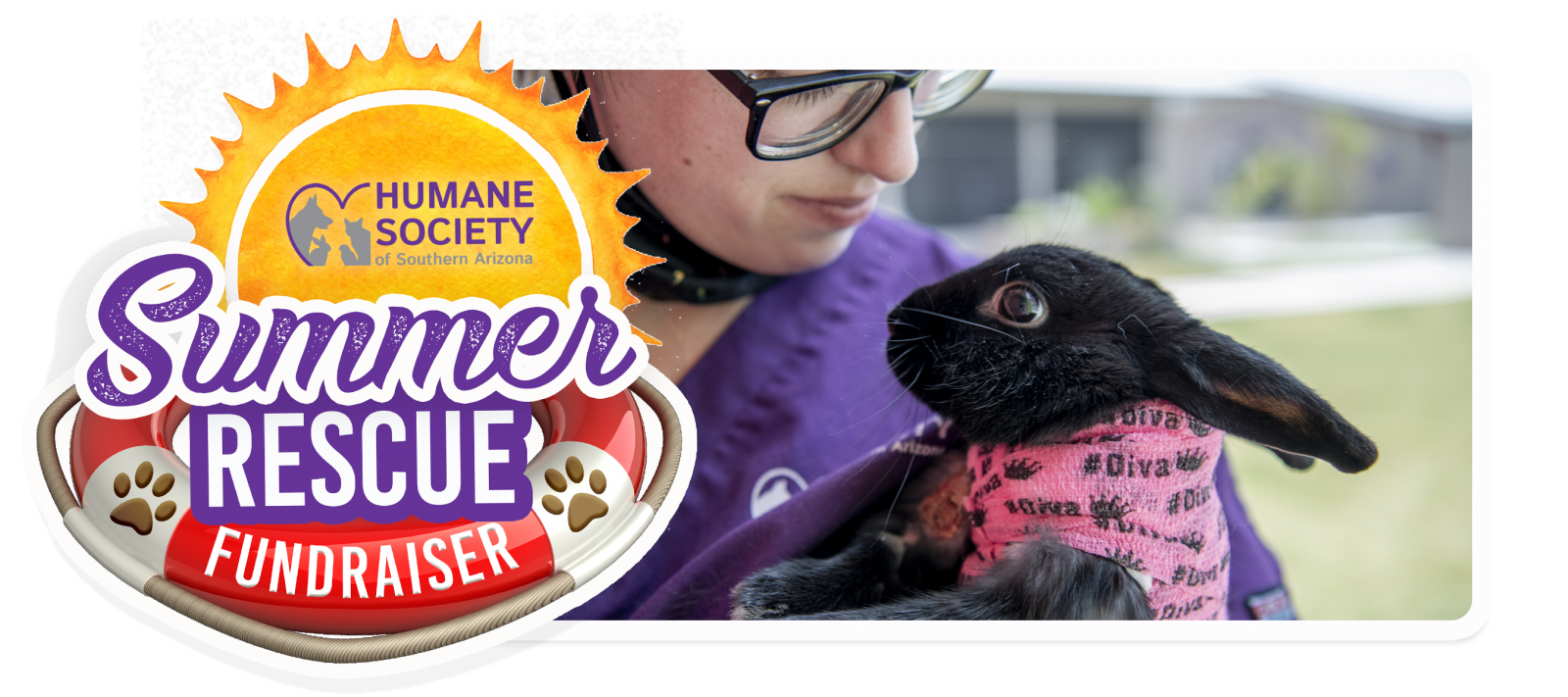 Summer Rescue Fundraiser Email Header Template - Pip