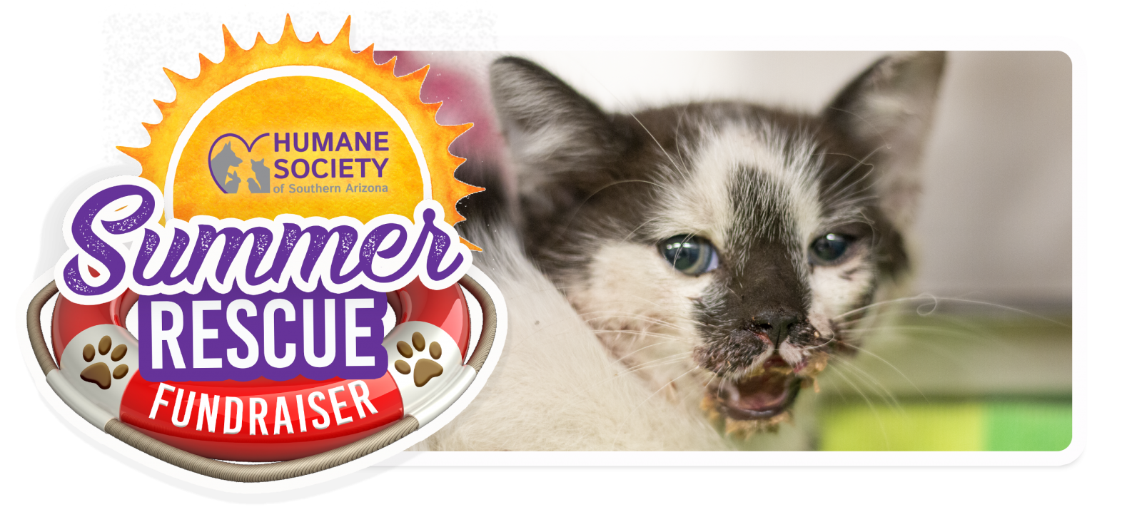 Summer Rescue Fundraiser Email Header Template - Suede