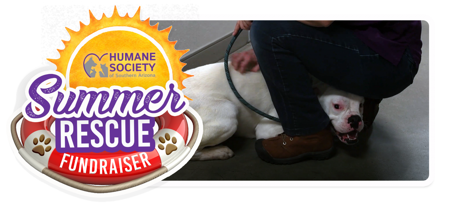 Summer Rescue Fundraiser Email Header Template - Yogurt