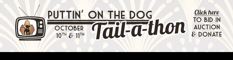 POD Tailathon Email header