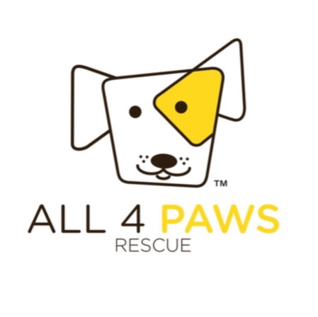 All 4 Paws Logo