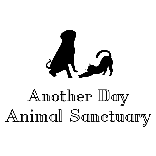 Another Day Animal Sanctuary Logo