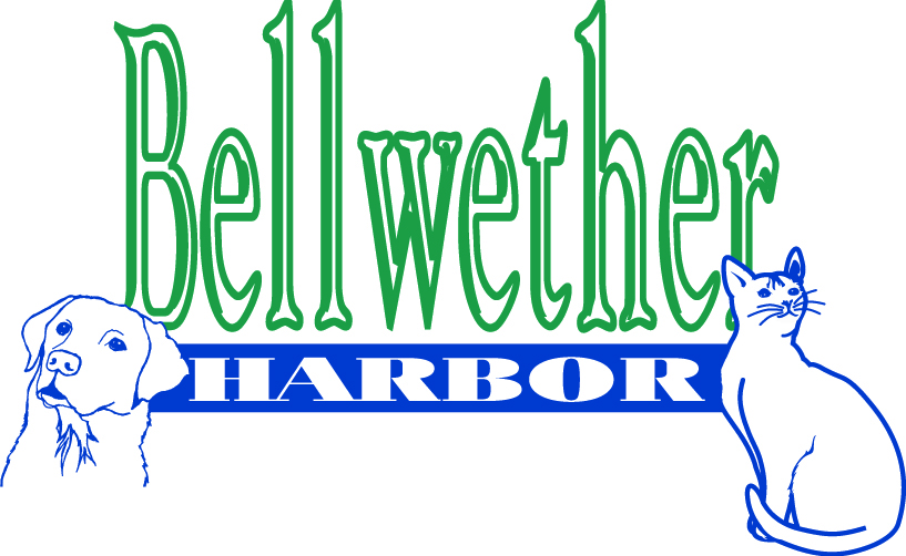 Bellwether Harbor Logojpg