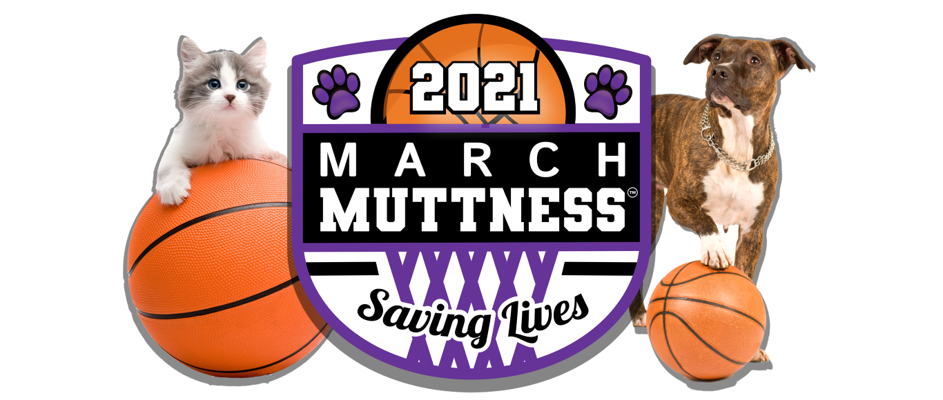 March Muttness header image (Medium)