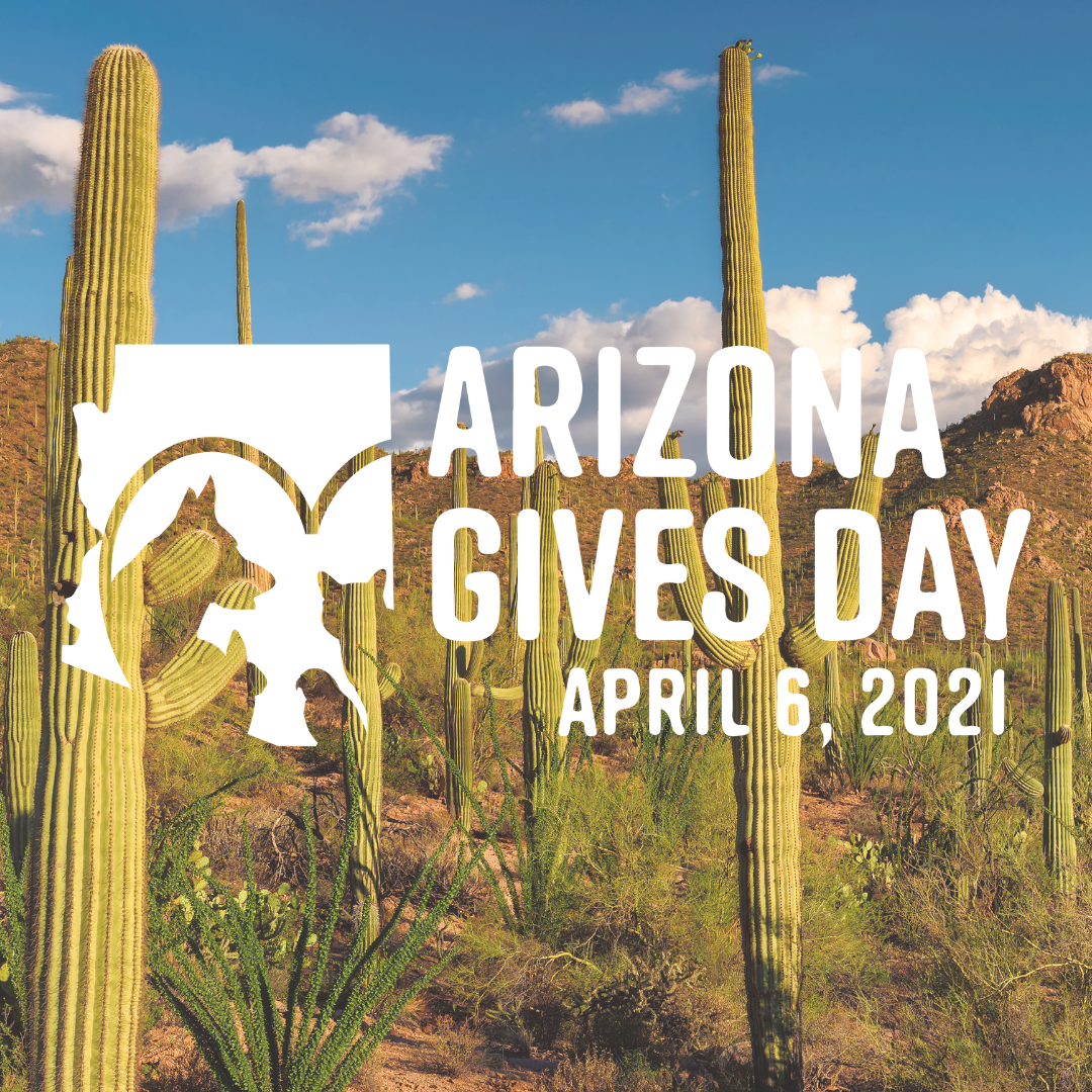AZGives Day - square