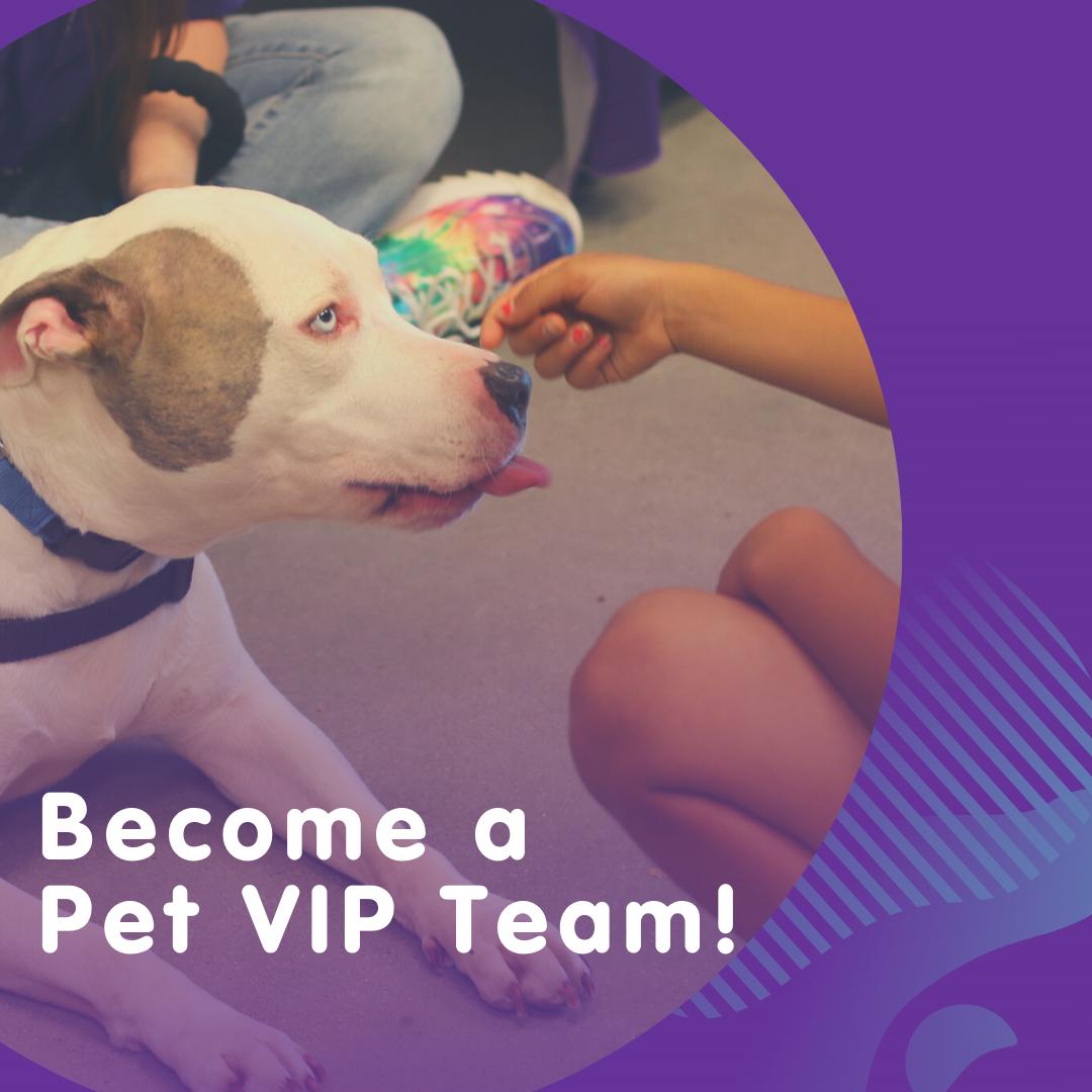 Become a Pet VIP (1)
