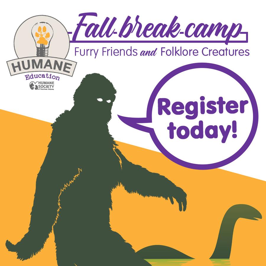Fall Break Camp Square Graphic
