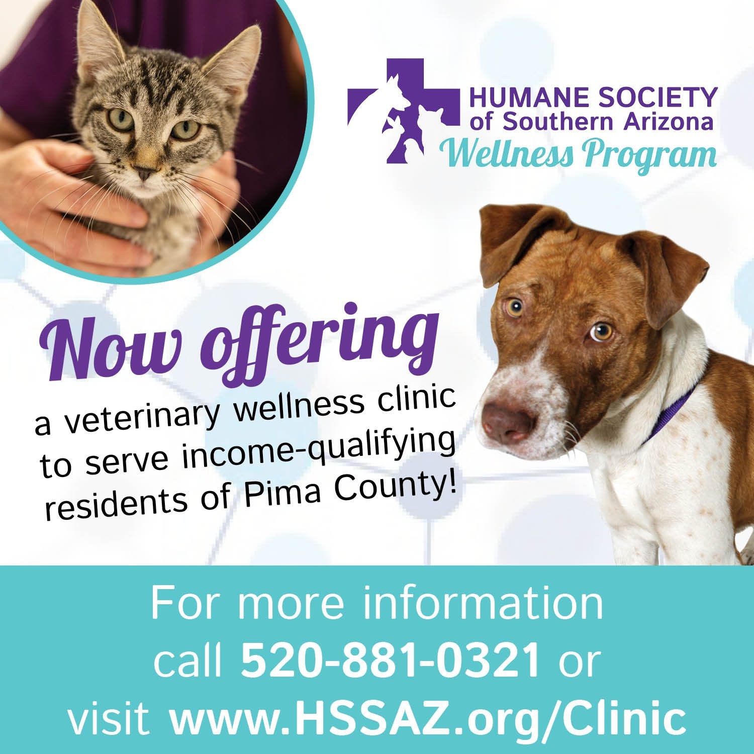 HSSA Wellness Clinic- email square